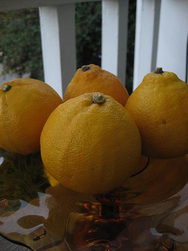 Bergamot sour oranges