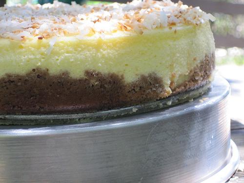 Coconut cheesecake profile