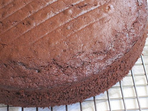 Chocolate Cake Cooling