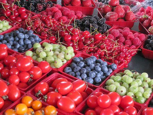 Montreal Summer Fruit